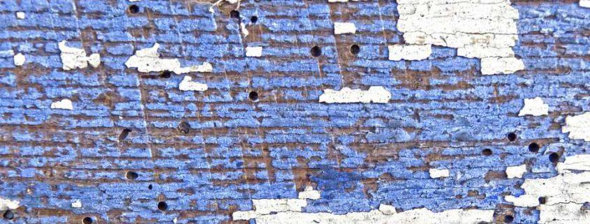 Qu diferencias hay entre carcoma y termita menosplagas for Carcoma o termitas