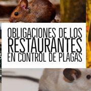 plagas restaurantes