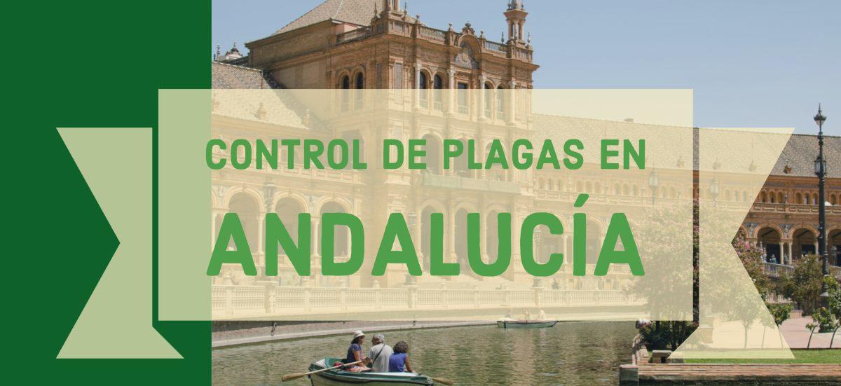 control de plagas en andalucia
